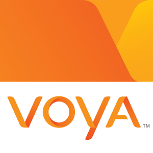 Voya 401k investment options