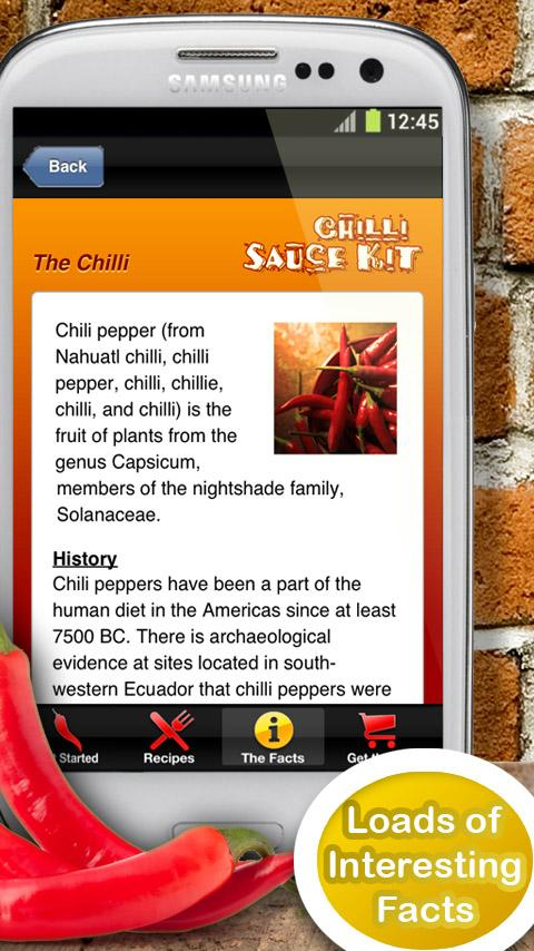 Chilli Sauce Kit- screenshot