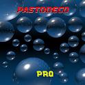 PastoDeco Pro© icon