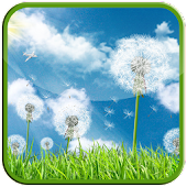 Galaxy Series Dandelion LWP
