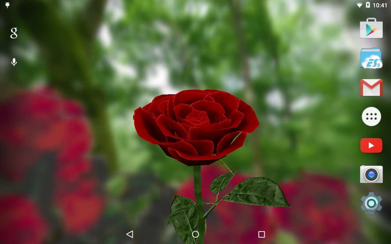 3d rose live wallpaper free revenue download estimates google screenshots voltagebd Gallery