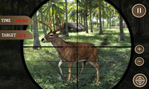 狩獵叢林動物2