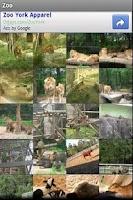 Screenshot of Zoo