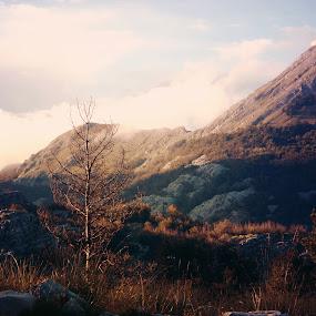 Lovcen by Anja Popov - Landscapes Mountains & Hills ( #mountain, #lovcen, #nature, #montenegro, #wildbeauty )