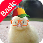 Sounds For Kids - Basic