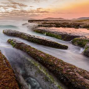 Bicheno sunrise by Matt Green - Landscapes Waterscapes ( d800, sea, long exposure, sunrise, seascape, landscape )