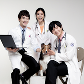 Royal animal medical center