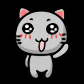 Cuty Gray Cat