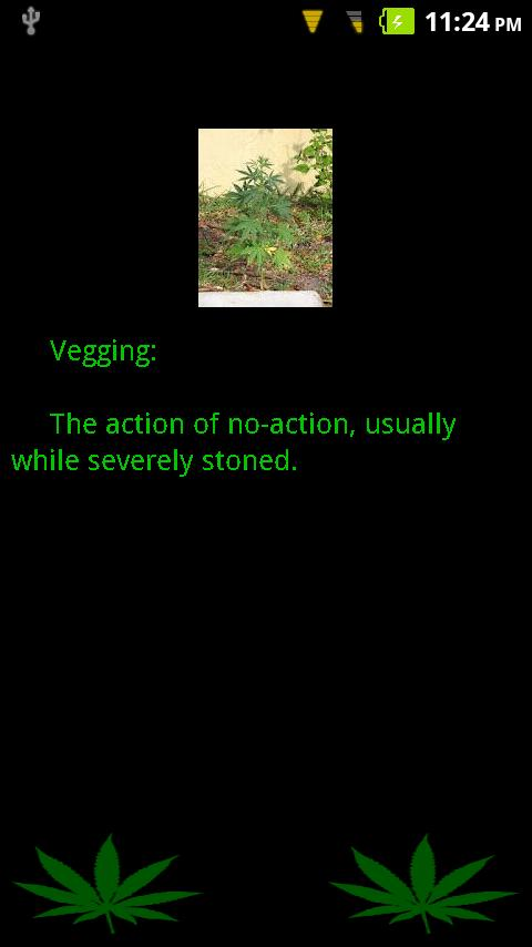 Weed Dictionary - screenshot