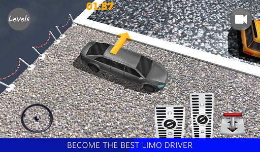 Limo Driver 3D 2015