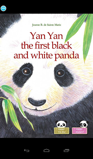 Yan Yan: Black and White Panda