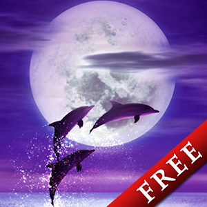 download Dolphin -Amethyst-Trial apk