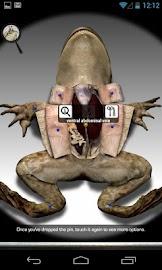 Froguts Frog Dissection Screenshot 2