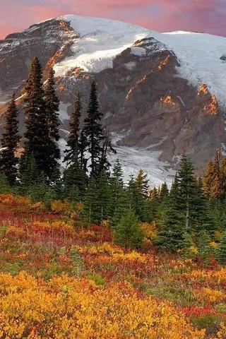 Wallpaper Nature Free HD