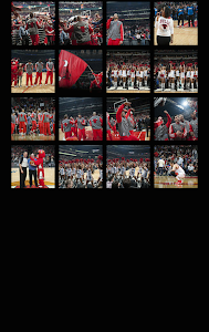 Chicago Bulls v1.0.2