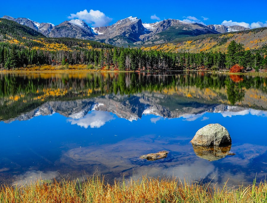 Autumn Mirror at Sprague Lake in Rocky Mountain National Park by Jennifer McWhirt - Landscapes Mountains & Hills ( mirror, spraguelake, mountains, photographybyjenmcwhirt, colorado, rockies, rmnp, aspens, , fall, color, colorful, nature )