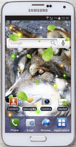 玩免費個人化APP|下載Wolves Photo HQ live wallpaper app不用錢|硬是要APP