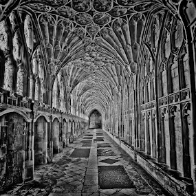 Here is a photograph taken from the cloister in Gloucester Cathedral.  Located in Gloucester, Gloucestershire, England, UK.  It was used as part of Hogwarts corridors in the Harry Potter films. by Michael D Beckwith - Buildings & Architecture Places of Worship