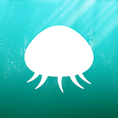 Jellyfish Swim