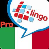 L-Lingo Learn Italian Pro