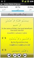 Screenshot of Audio Pack (Ahmad Al-Ajamy)
