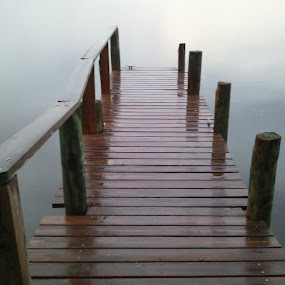 Rainy Day at the Bay by Ty Shults - Instagram & Mobile Android ( water, fog, ocean, rain, dock, mist )