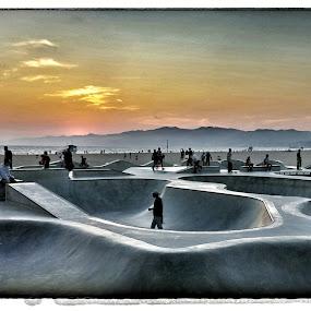 Venice Beach Skatepark  by Greg Bracco - Sports & Fitness Skateboarding ( skateboarding, beaches, venice beach, sunset, venice california, 5diii, ocean, skateboard, sun,  )