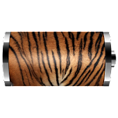 Tiger Skin: Battery Widget