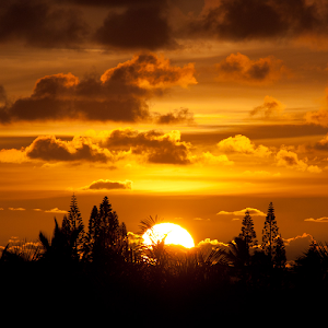 Sunrise Wallpaper Android Apps on Google Play
