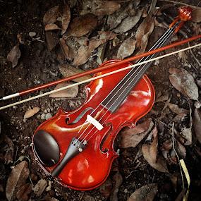 biola tidur by Indra Prihantoro - Artistic Objects Musical Instruments ( music, musical instrument, artistic objects )