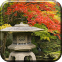 Autumn Zen Garden wallpaper icon