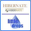 Learn Hibernate (Offline Docs) icon