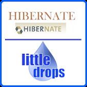 Learn Hibernate (Offline Docs)