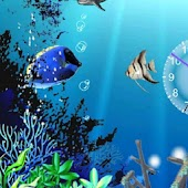 Cartoon Ocean Aquarium