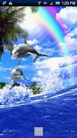 Screenshot of Dolphin Rainbow Trial