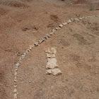 unknown Dinosaur bones