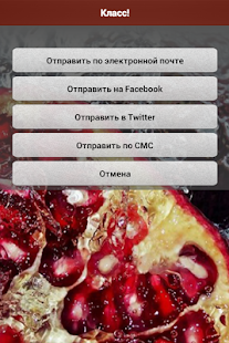 Granat Cafe Restaurant, Odessa- screenshot thumbnail
