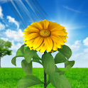 3D Sun Flower Live Wallpaper icon