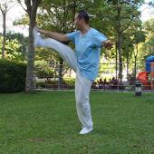 Yang TaiChi40-6