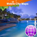 Aruba Street Map logo