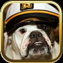 Bulldog Dog Puzzle Games icon