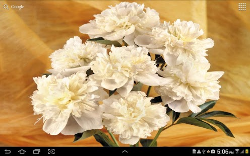 Flowers Live Wallpaper - screenshot thumbnail