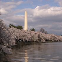 Wildlife of Washington, D.C.