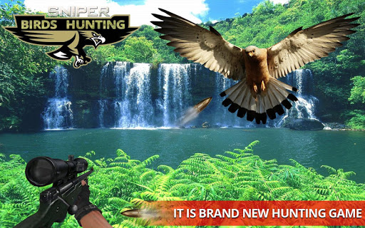 Jungle Sniper Birds Hunting 3D