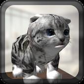 CatSimulator