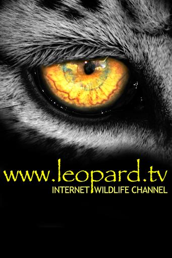 Leopard TV