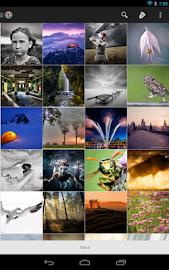 Tool for Google Photo, Picasa Screenshot 14