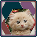 HexSaw - Kittens icon