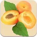 ApricotManner logo