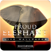 ELEPHANT Live Wallpaper
